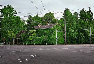 Grünhaus an der Strasse - p1495m1591387 von Uwe Arens