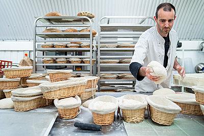 Baker putting dough into basket in bakery - p300m2180187 by Francesco Buttitta