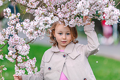 Portrait of little girl in a park standing under blossoming Japanese cherry tree - p300m2181058 by Oxana Guryanova