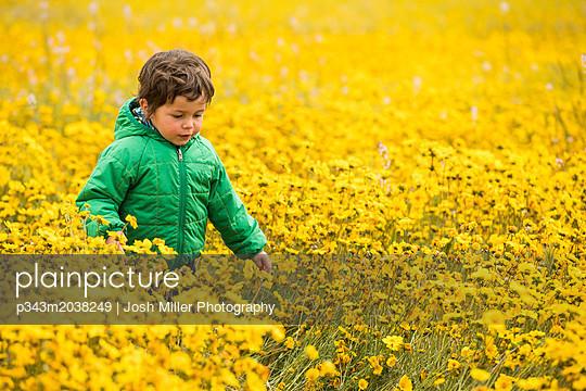 p343m2038249 von Josh Miller Photography