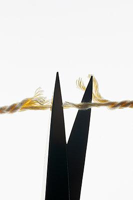 Cut the thread - p1149m2271393 by Yvonne Röder