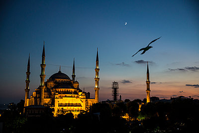 Blue Mosque - p535m1050081 by Michelle Gibson