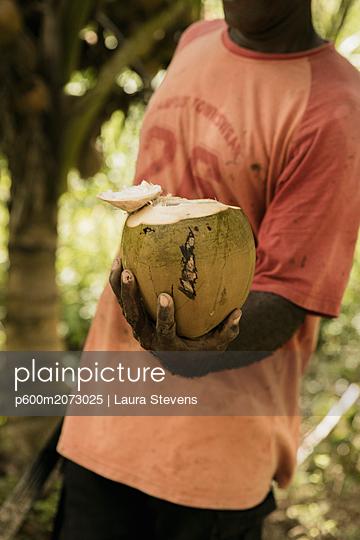 Frisch aufgeschnittene Kokosnuss - p600m2073025 von Laura Stevens