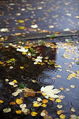 Rainy day - p1980271 by David Breun