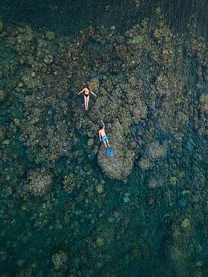 Couple snorkeling in ocean - p300m2080791 by Konstantin Trubavin