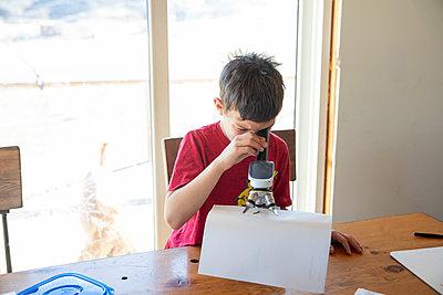 Little boy examining bug under microscope - p1166m2236933 by Cavan Images