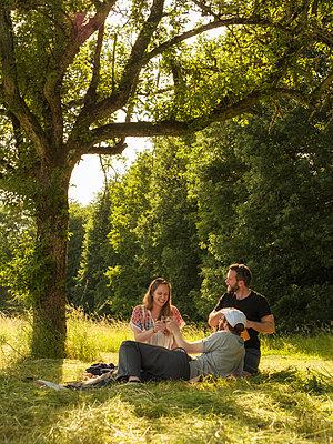 Three friends drinking wine together in a park - p300m2070250 von Albrecht Weißer