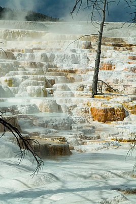 Hot springs, Geyser Basin, Yellowstone National Park, Wyoming. - p855m2261344 by Natalie Tepper