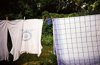 Wäsche an der Leine - p1120645 von AMI