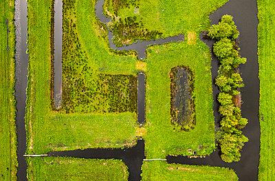 Ditches - p1132m2291581 by Mischa Keijser