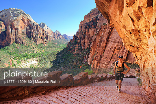 Steep climb to the Angel's Landing - p1377m1329160 by Maurizio Rellini