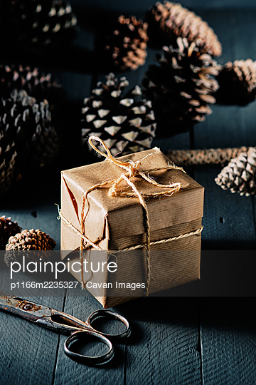 Package wrapped in kraft paper and tied with string - p1166m2235327 by Cavan Images