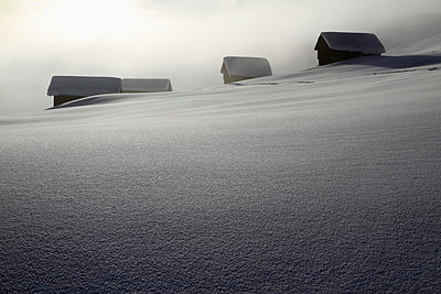 Four log cabins on smooth snowy landscape  - p30120481f by Gerhard Fitzthum