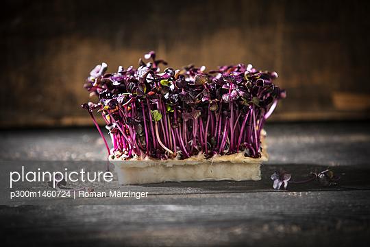 Red radish cress - p300m1460724 by Roman Märzinger