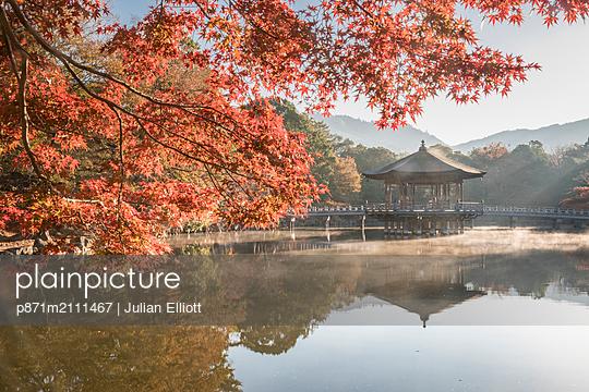Autumn color around Ukimido pavilion on the Sagiike Pond, Nara Park, Nara, Japan - p871m2111467 by Julian Elliott