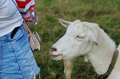 Person and goat - p1412m2125649 by Svetlana Shemeleva