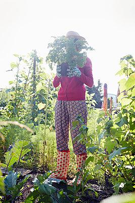 Gartenwelt - p464m1152360 von Elektrons 08