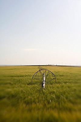 Feldbewässerung - p7800122 von Andrew Geiger