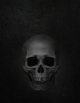 Skull - p1275m2135125 by cgimanufaktur
