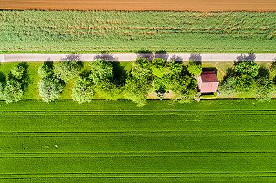 Germany, Baden-Wuerttemberg, Schurwald, field and house - p300m2005384 von Stefan Schurr