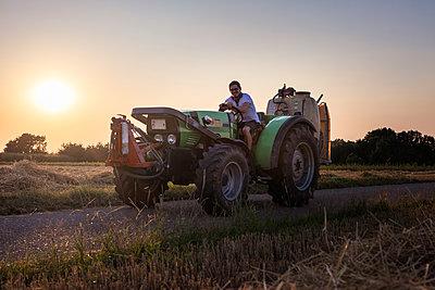 Organic farmer on a tractor at sunset - p300m2132423 by Sebastian Dorn