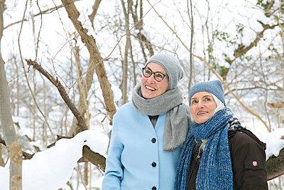 Wintertag im Wald  - p981m1590418 von Franke + Mans