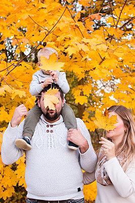 Herbstzeit - p796m2093130 von Andrea Gottowik