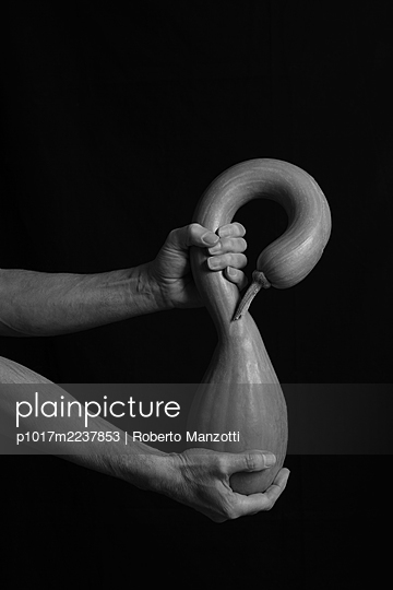 Curved courgette - p1017m2237853 by Roberto Manzotti