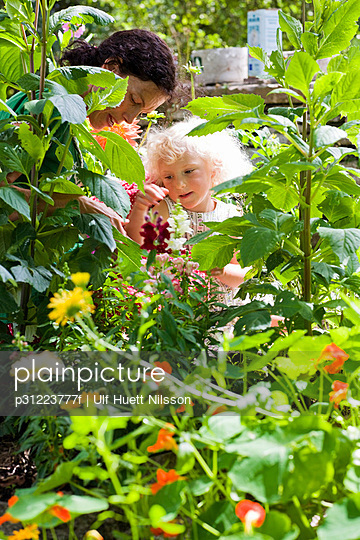 Mother and daughter pottering about in the garden Sweden - p31223777f by Ulf Huett Nilsson