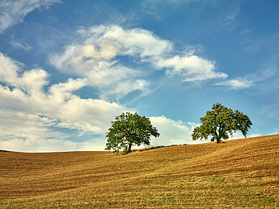 Tuscany, San Quirico d'Orcia - p968m987231 by Roberto Pastrovicchio