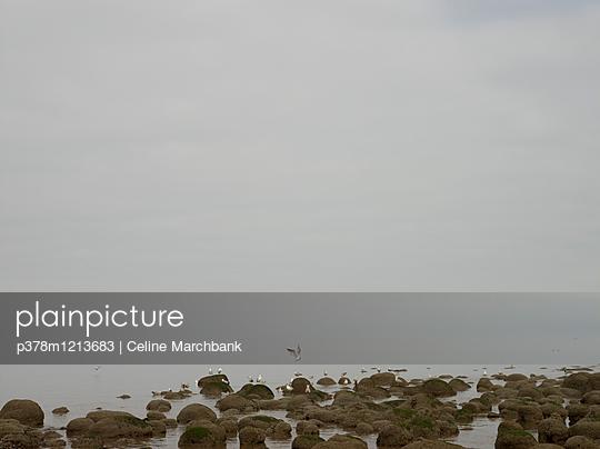 p378m1213683 von Celine Marchbank