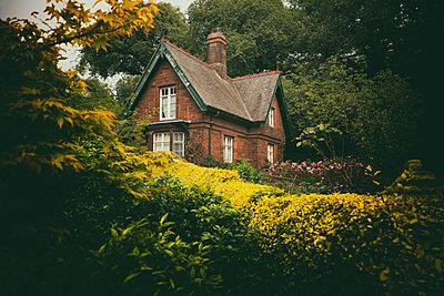 Old red brick cottage garden trees overgrown dark - p609m1192661 by OSKARQ