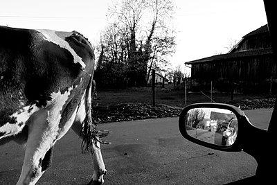 Franche-Comte, Doubs - p1189m1161753 von Adnan Arnaout