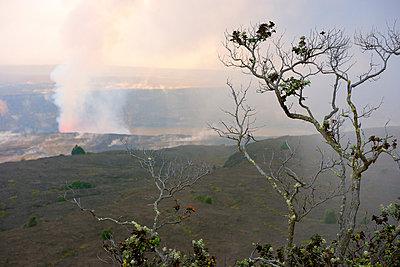Am Rande des Vulkans, Volcanoes-Nationalpark,  Halemaʻumaʻu - p1196m1000675 von Biederbick & Rumpf