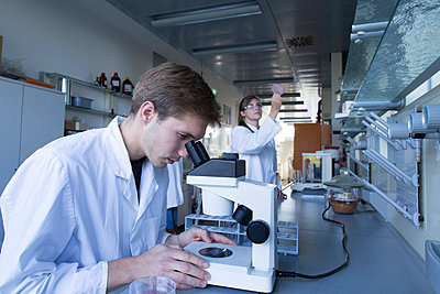 Young chemists working in a chemical laboratory - p300m978222f by Sigrid Gombert