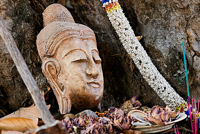 Buddhist head placed at tree base, Chiang Mai, Thailand, Southeast Asia, Asia - p871m1073232f by Rod Porteous