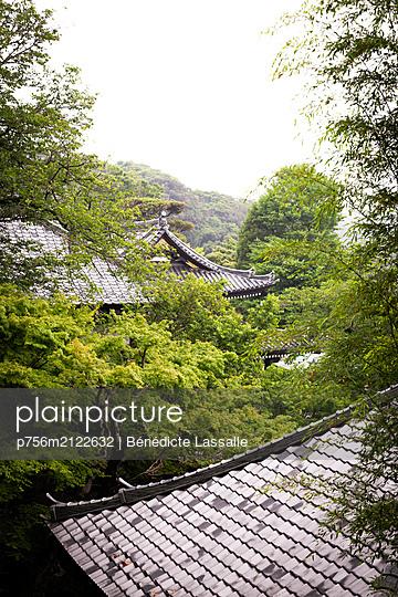 Japanese temples among trees - p756m2122632 by Bénédicte Lassalle