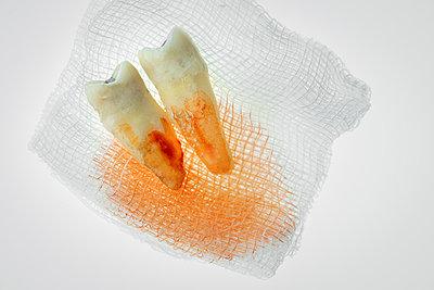 Dentistry - p1275m2210256 by cgimanufaktur