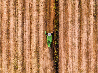 Serbia, Vojvodina, Combine harvester on a wheat, aerial view - p300m1568350 by oticki