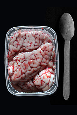 Brain in a plastic tray - p450m1123597 by Hanka Steidle