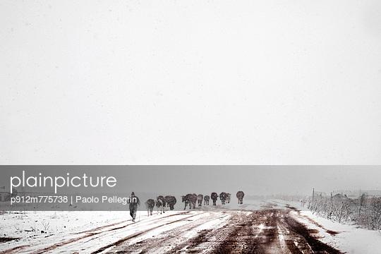 p912m775738 von Paolo Pellegrin