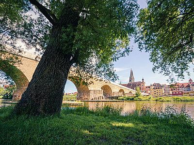Regensburg - p1275m2291188 by cgimanufaktur
