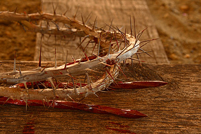 Crown of thorns - p4424373f by Design Pics
