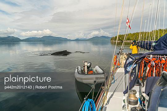 p442m2012143 von Robert Postma
