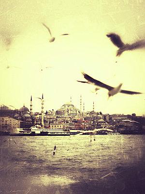 Istanbul - p5864654 by Kniel Synnatzschke