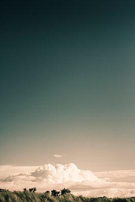 Blauer Himmel über einer Wolkendecke - p1255m1574970 von Kati Kalkamo