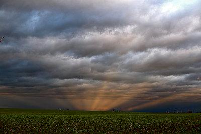 Orkan Friederike  - p1258m1516723 von Peter Hamel