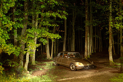 At night in the forest - p631m913068 by Franck Beloncle