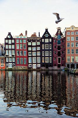 Amsterdam Damrak - p1212m1196254 von harry + lidy
