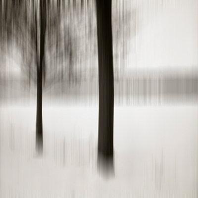 Winter - p3420437 by Thorsten Marquardt